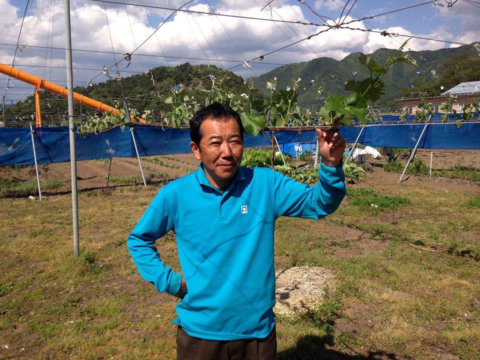ブドウ栽培に励む01