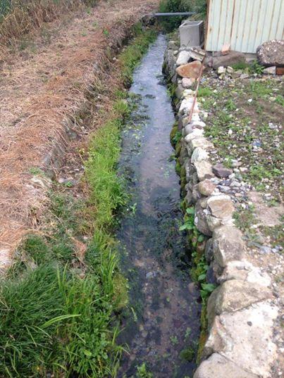 石を積んだ水路を流れる清水